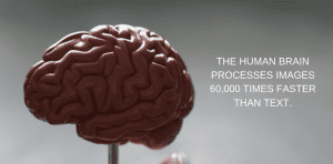 Human brain processes images faster than text