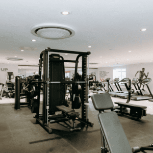 All different gym equipment