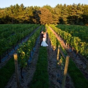 A couple in the Vineyard