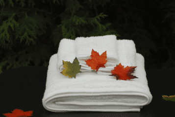 3 Autumn Leaves on some white towels