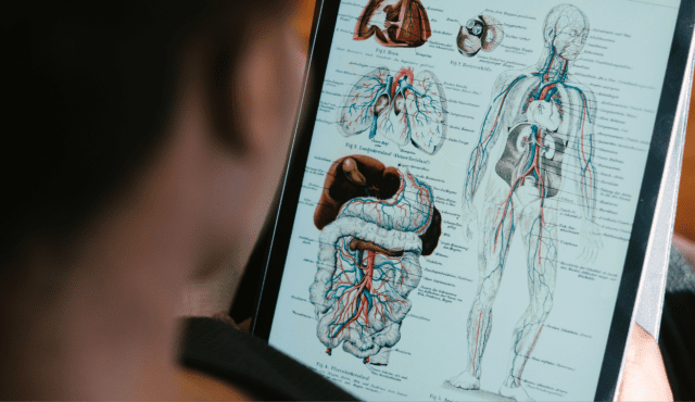 VTCT Level 3 Anatomy and Physiology Online